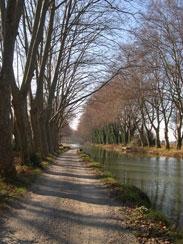 canaldumidi Le Minervois et le canal du Midi