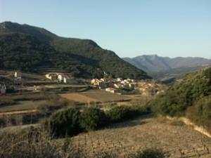 vignesstchinian 300x225 Le pays des schistes : Faugères et Saint Chinian