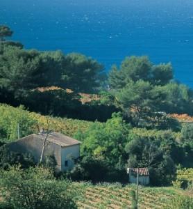 cotesdeprozence 278x300 Côtes de Provence
