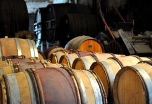 chaisclosdescalades 300x206 Clos des Calades   AOC Languedoc