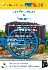 vendanges anciennes 207x300 Vendanges à lancienne le 25 septembre 2011 à St Christol