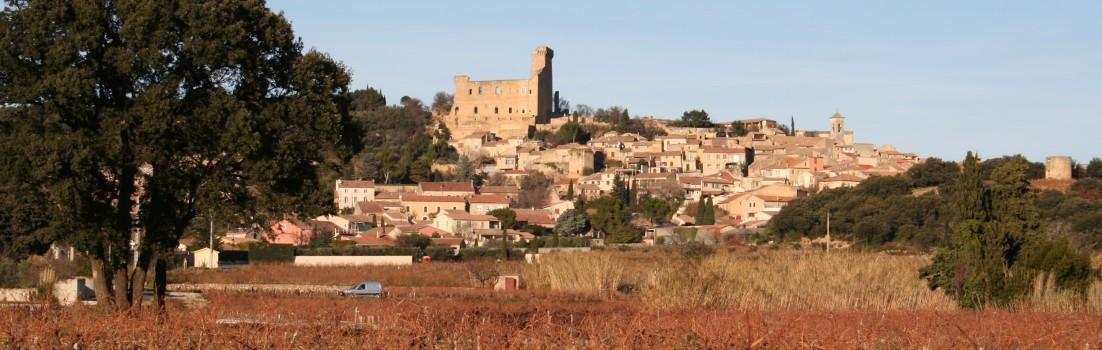 Chateauneuf du Papes en hiver, une opportunité pour profiter de ses crus !